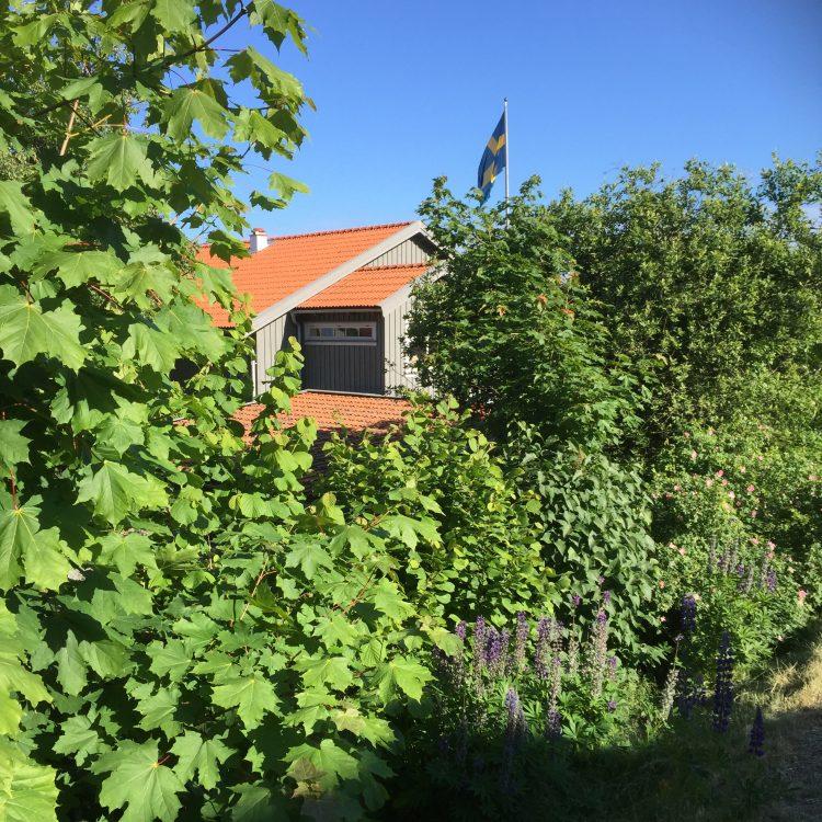 view on lådfabriken and garden